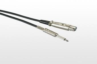 XLR With Plug